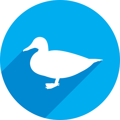 Duck Icon Silhouette 1