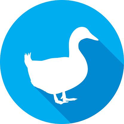 Duck Icon Silhouette 2