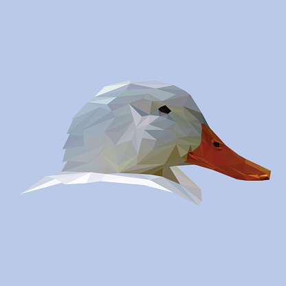 Duck low poly.