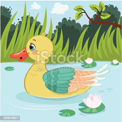 A cute duck swimming on the pond.