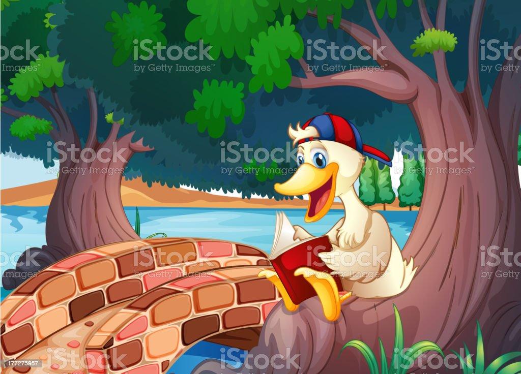 duck reading near the bridge royalty-free stock vector art