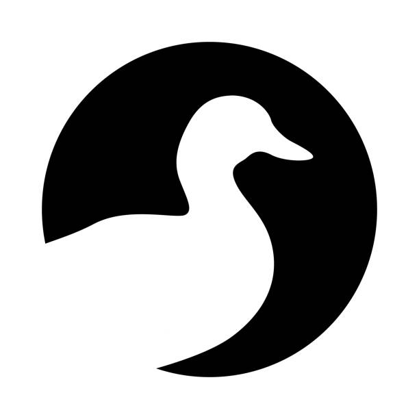 Duck symbol Sign head duck. Icon duck. Isolated white silhouette duck in the circle on black background. Vector illustration drake male duck stock illustrations