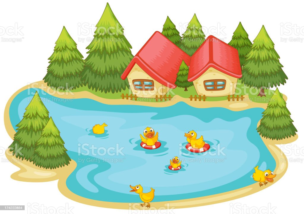 duckling in a pond royalty-free stock vector art