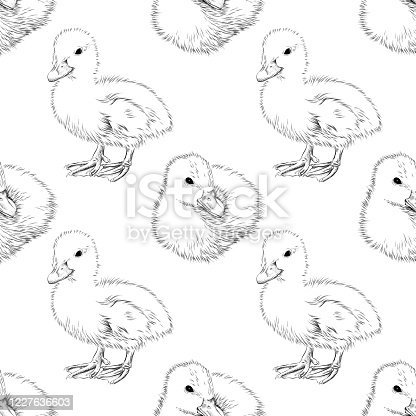 Duckling Seamless Background  - Pen and Ink Vector EPS10 Illustration