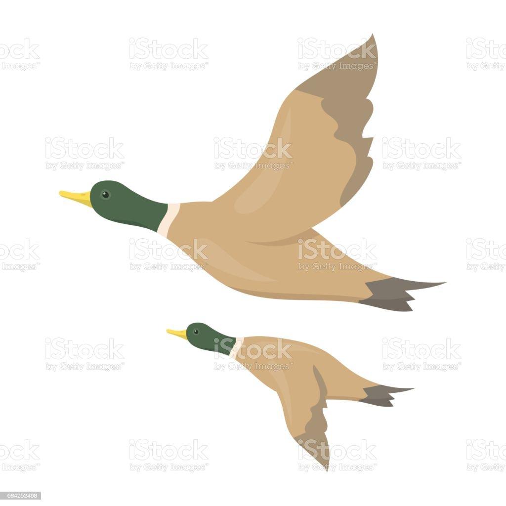 Ducks icon in cartoon style isolated on white background hunting ducks icon in cartoon style isolated on white background hunting symbol stock vector illustration biocorpaavc Gallery