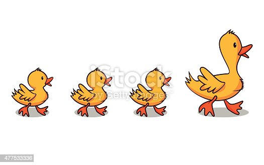 istock Ducks in a row 477533336
