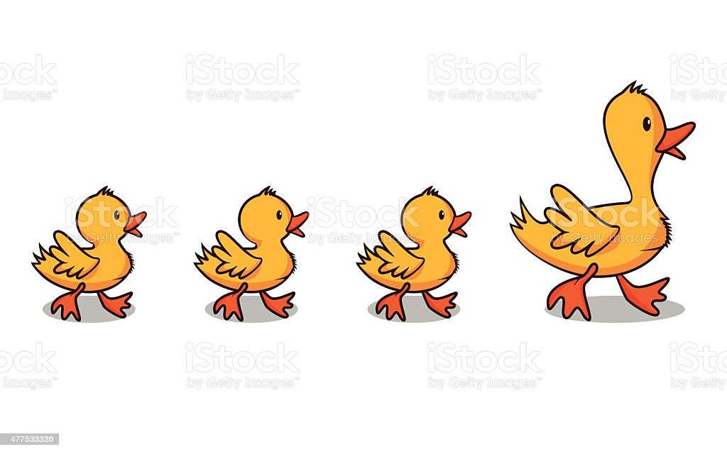 royalty free ducks in a row clip art vector images illustrations rh istockphoto com duck clip art free duck clips for cardigans