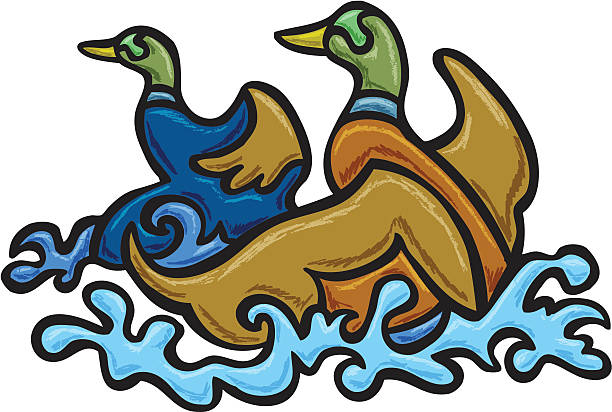 Ducks Landing vector art illustration