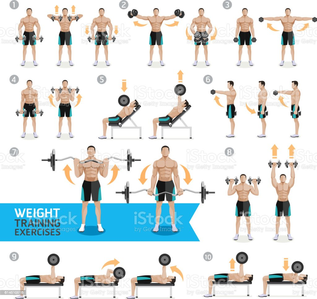 Free Weights Exercises: Dumbbell Exercises And Workouts Weight Training Stock
