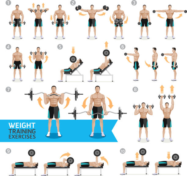 Free Weights Strength Training: Top 60 Strength Training Clip Art, Vector Graphics And