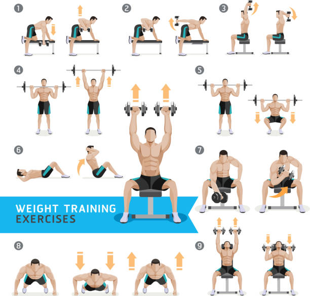 Dumbbell Exercises and Workouts Weight Training. - ilustración de arte vectorial