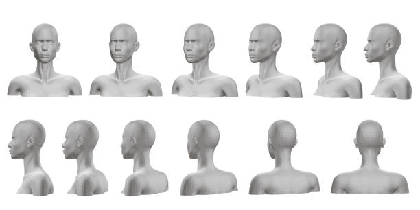 Dummy Set with mannequin presented on all sides. 3D. Isolated set with a mannequin with a bust and head. The dummy view rotates from the front side to the back side. Vector illustration. human head stock illustrations