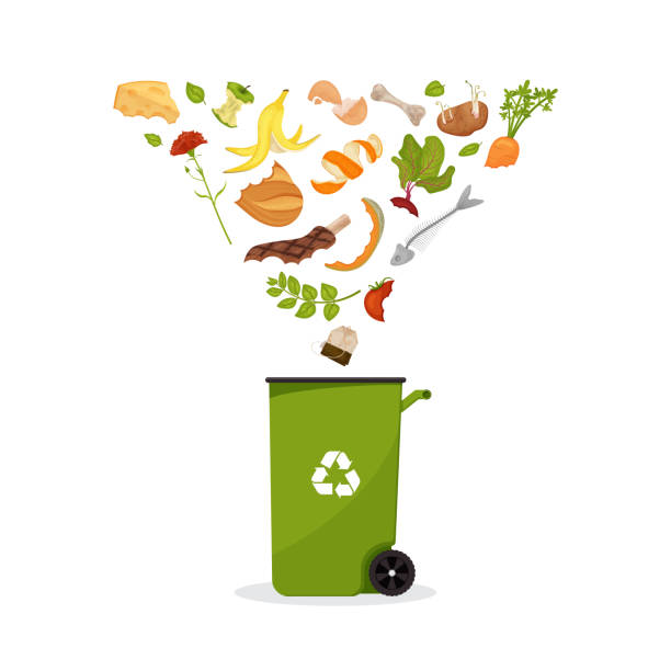 ilustraciones, imágenes clip art, dibujos animados e iconos de stock de contenedor con productos que vuelan hacia él - leftovers