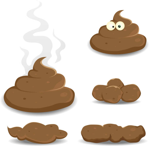 Dung, Pooh And Other Shit Collection Vector illustration of various cartoon dung, shit, pooh, and other dog dejections. Vector eps and high resolution jpeg files included. feces stock illustrations