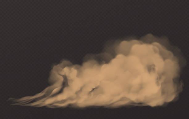 stockillustraties, clipart, cartoons en iconen met stofwolk, vuile bruine rook, zware dikke smog - mist donker auto
