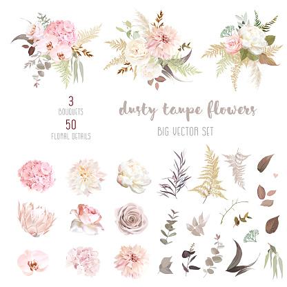 Dusty pink and ivory beige rose, pale hydrangea, peony flower, fern, dahlia