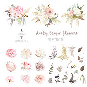 Peony in the technology of Chinese water color.