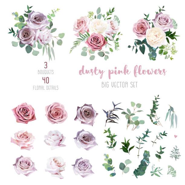 塵土飛揚的粉紅色和淡紫色的古色古香的玫瑰, 薰衣草和蒼白的花, 桉樹 - 淺粉色 幅插畫檔、美工圖案、卡通及圖標