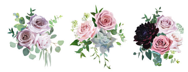 Dusty pink and mauve antique rose, pale flowers vector design wedding bouquets Dusty pink and mauve antique rose, pale flowers vector design wedding bouquets. Eucalyptus, dark burgundy dahlia, succulent, greenery. Floral pastel style border.All elements are isolated and editable bunch stock illustrations
