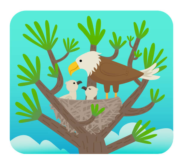 Eagle and Chicks vector art illustration