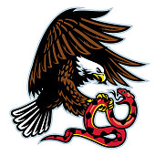 istock eagle and snake 1050706134