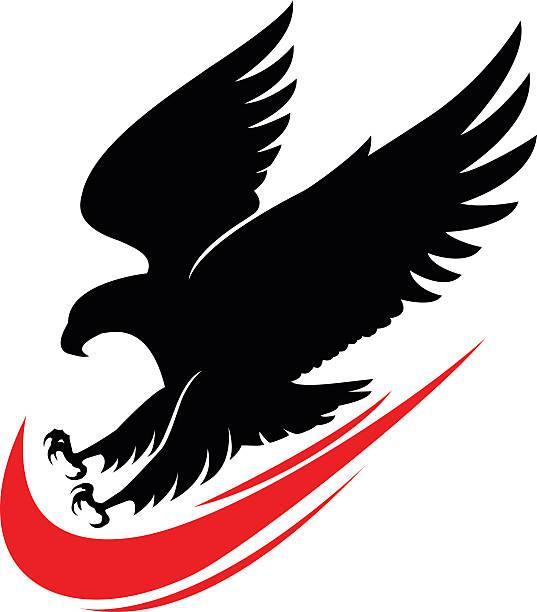 Royalty Free Eagle Bird Fire Natural Phenomenon Flame Bald ...