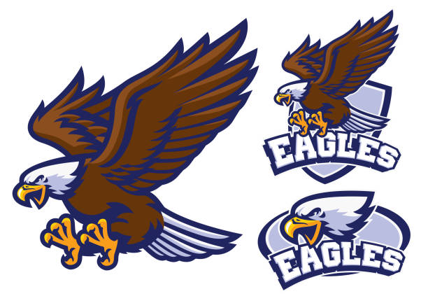 eagle character set in sport mascot style vector of eagle character set in sport mascot style mascot stock illustrations
