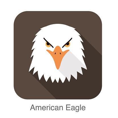 eagle face flat icon design. Animal icons series.