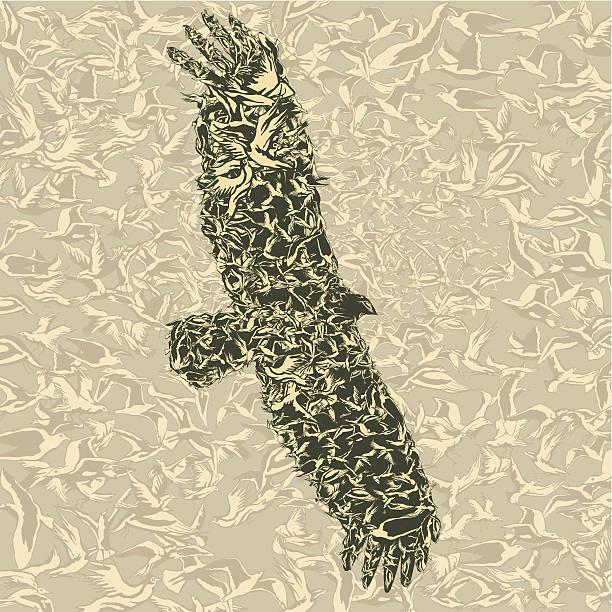 Eagle from flying birds vector art illustration