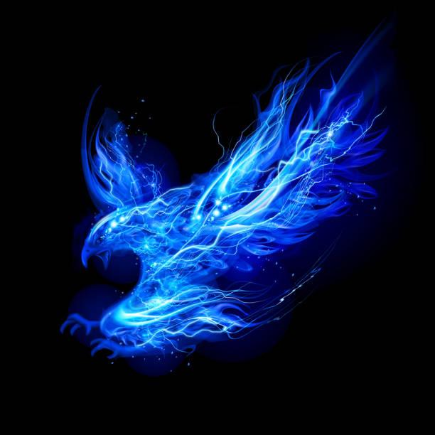 Eagle from Lightning vector art illustration