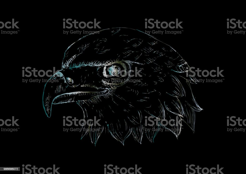 Eagle Head Logo Template Hand Draw Illustration Stock
