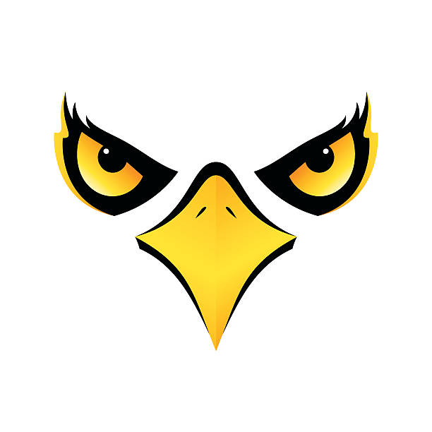 eagle head on white background vector icon eps10 - 부리 stock illustrations