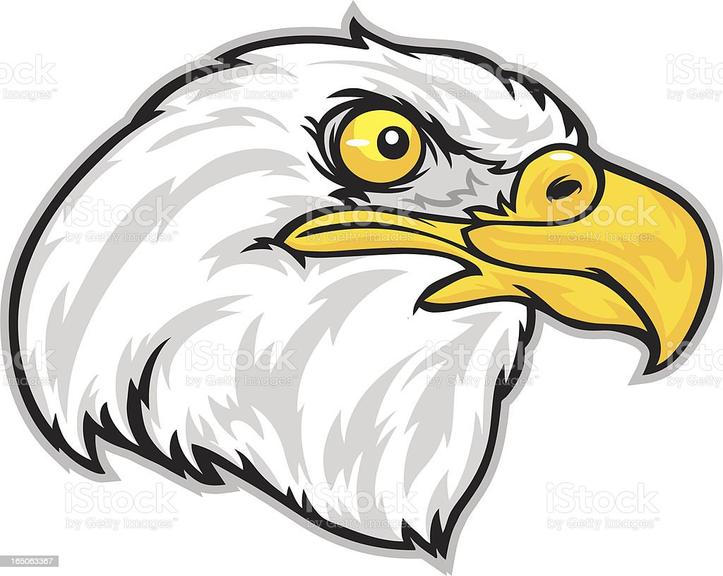 Eagle head vector art illustration