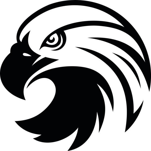 Águila de cabeza  - ilustración de arte vectorial