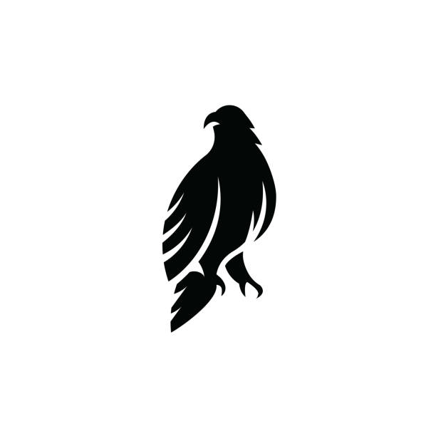 stockillustraties, clipart, cartoons en iconen met eagle pictogram geïsoleerd op witte achtergrond - neerstrijken