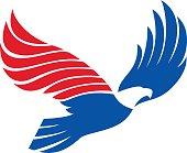 vector of flying eagle design