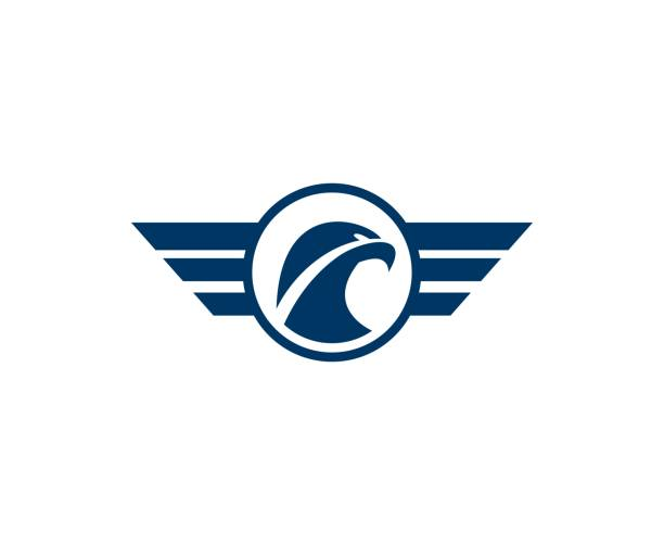 Eagle icon This illustration/vector you can use for any purpose related to your business. aircraft wing stock illustrations