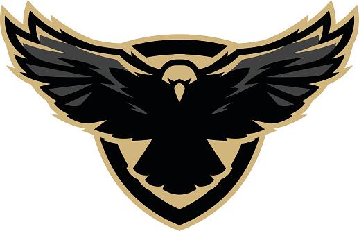 Eagle in flight, icon , symbol. Vector illustration.