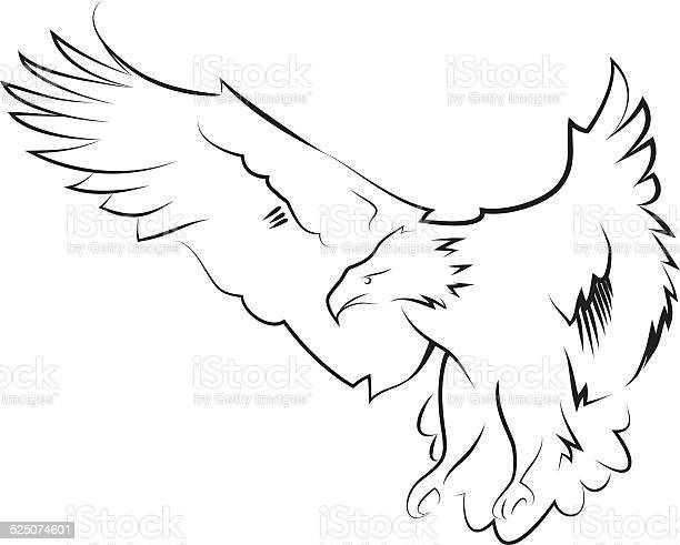 Eagle In The Hunting Position Line Art Stock Illustration - Download Image Now