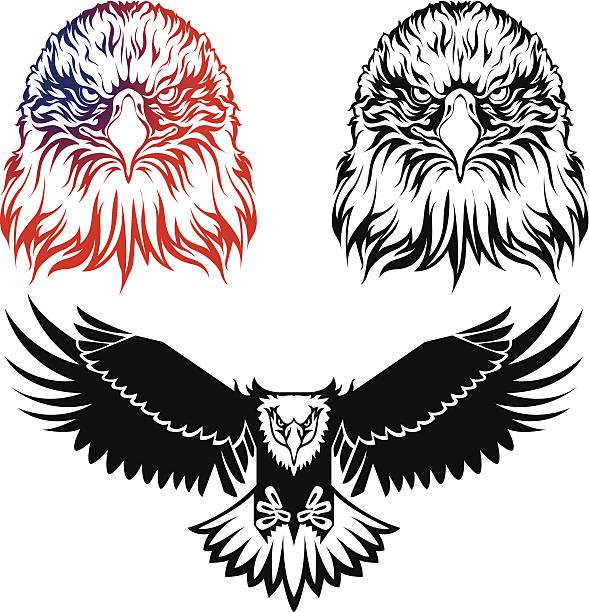 Adler-logo – Vektorgrafik