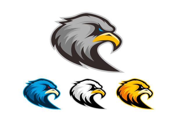 ilustrações, clipart, desenhos animados e ícones de logotipo da águia - equipe esportiva