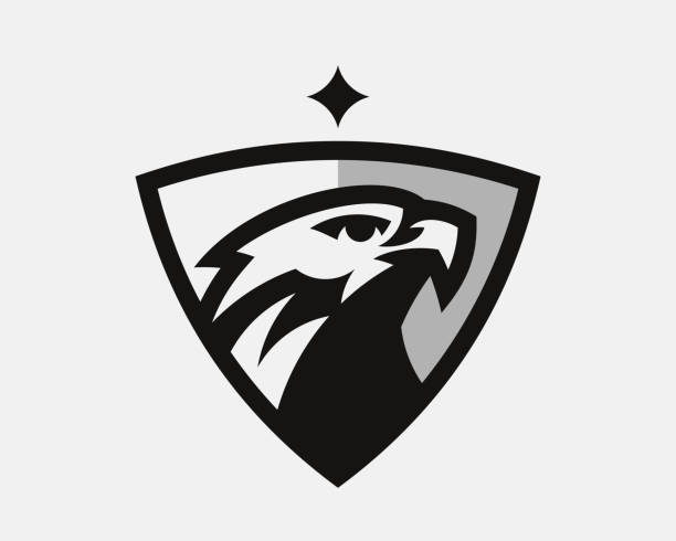 illustrations, cliparts, dessins animés et icônes de logo moderne d'aigle. conception d'emblème de faucon modifiable pour votre entreprise. illustration de vecteur. - aigle