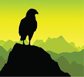 A beautiful silhouette of an eagle observing its surroundings on a rocky peak. The bird silhouette is in full and on a different layer.