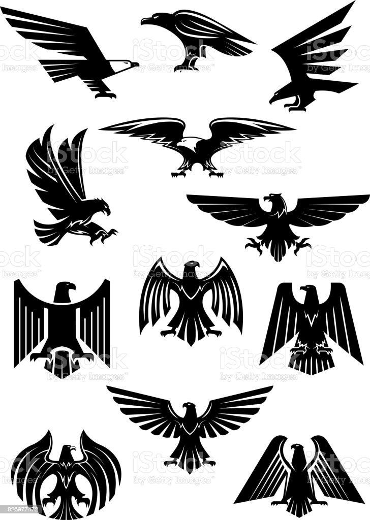 Divisa heráldica águila o halcón, aquila o halcón - ilustración de arte vectorial