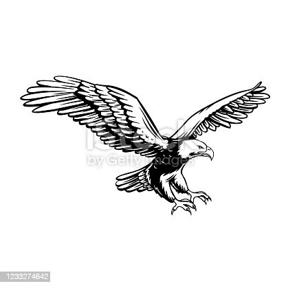 Eagle retro icon. Predatory bird badge, black on white. Freedom sign, vector illustration.