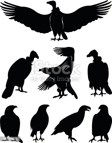 vector file of eagle silhouettes