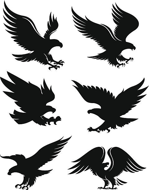 Eagle silhouettes vector art illustration