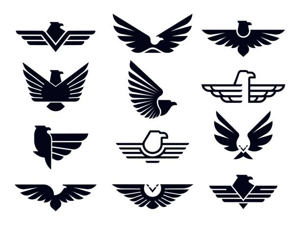 illustrations, cliparts, dessins animés et icônes de symbole d'aigle. silhouette emblème d'aigles volants, insigne ailé et ailes de faucon de liberté pochoir vector icons bundle - aigle