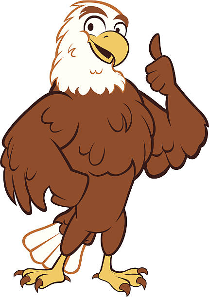 eagle - thumbs up - eagle character stock illustrations, clip art, cartoons, & icons