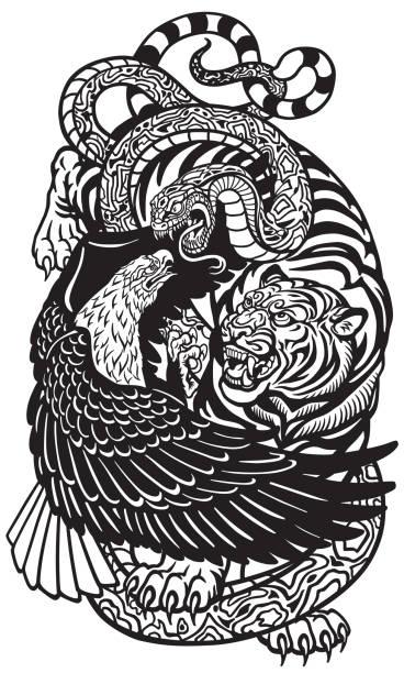 illustrations, cliparts, dessins animés et icônes de tigre et serpent aigle noir et blanc - tatouages animaux